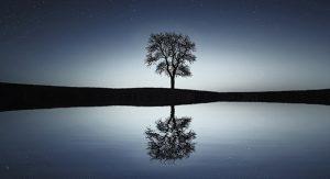 blog-eenzaamheid